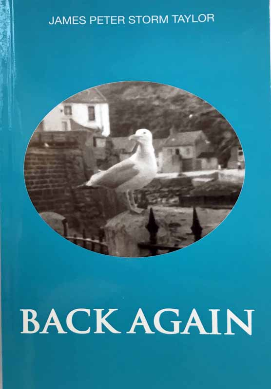 Cover of Back Again by Stephen Reevell